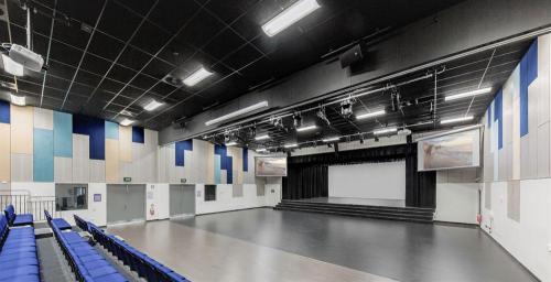 Performing Arts Theatre Consultancy / Design